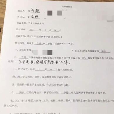 亡灵澄清谣言,与孩子母亲签订抚养协议